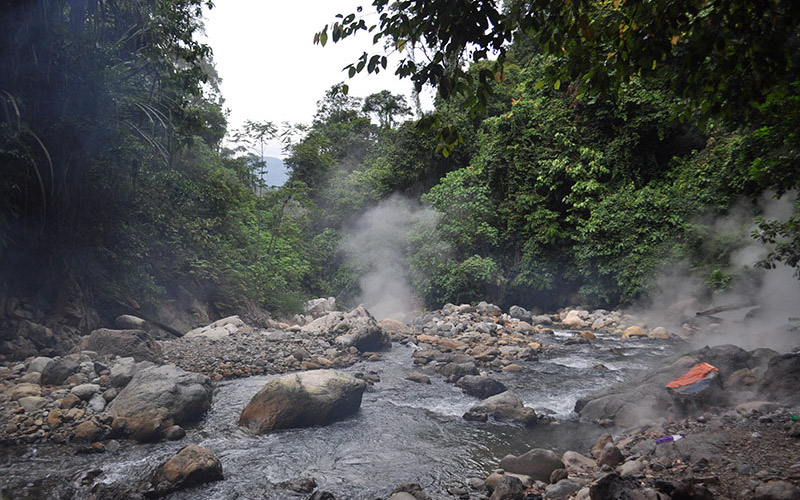 ketambe-jungle-jack-2-3