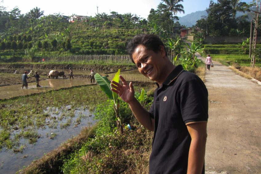 Tour im Nationalpark Gunung Halimun
