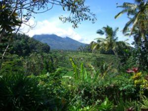 rundreise-bali-erlebe-indonesien-Balireise-Tirtagangga-Homestay-300x225