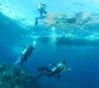 Blue Bay Divers