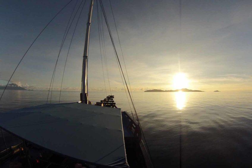 Sunshine Safari Schiff