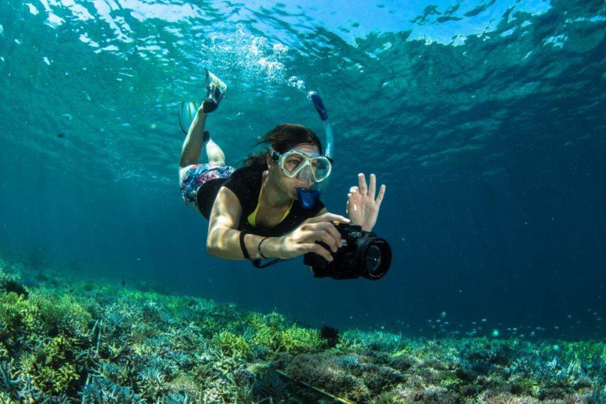 coral-guardian-komodo