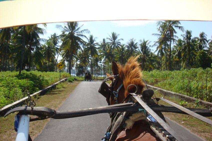 iwan-fahrer-guide-lombok-18