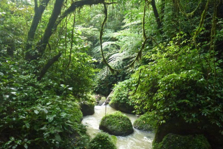 3-seen-tour-tomohon-4-Jungle_river_Pinaras_waterfall