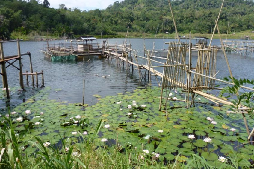 3-seen-tour-tomohon-5-Lake_highland