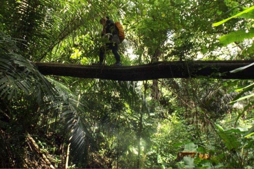 Tangkoko-Batuangus-Duasaudara Naturreservat 3