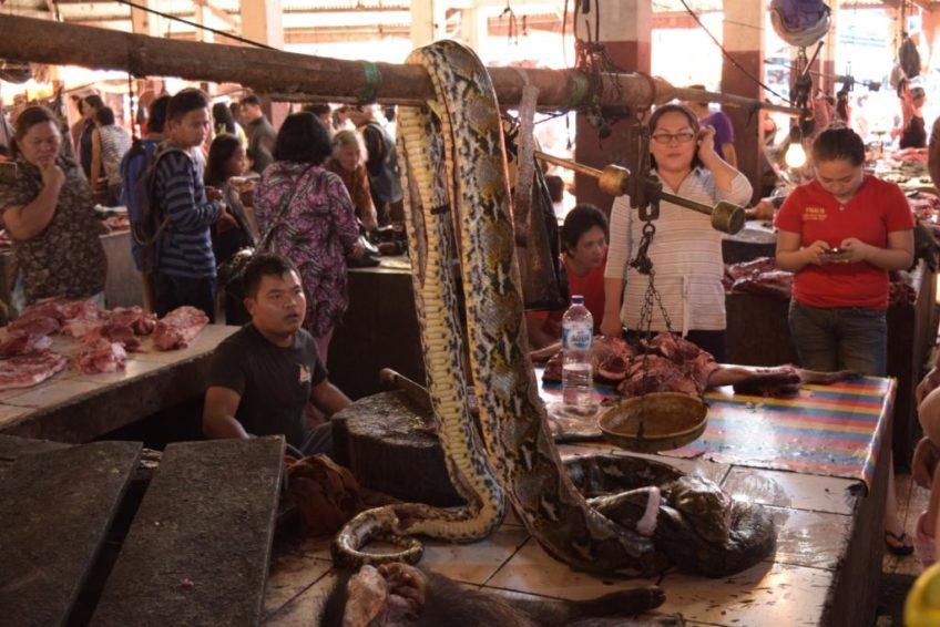 Minahasa Tour-Tomohon_Markt_Schlange