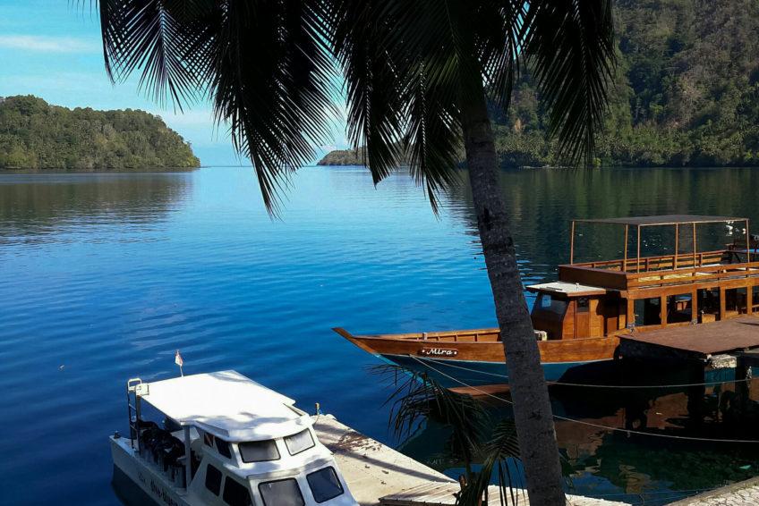 Bluemotion-Dive-Banda-Inseln-13