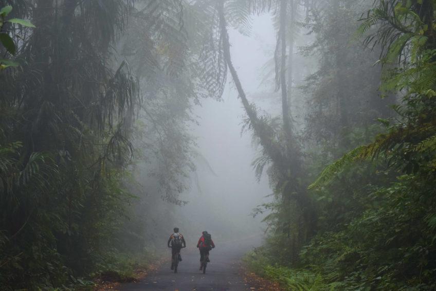CocosTravel-Fahrradtour-1Abfahrt durch den Regenwald