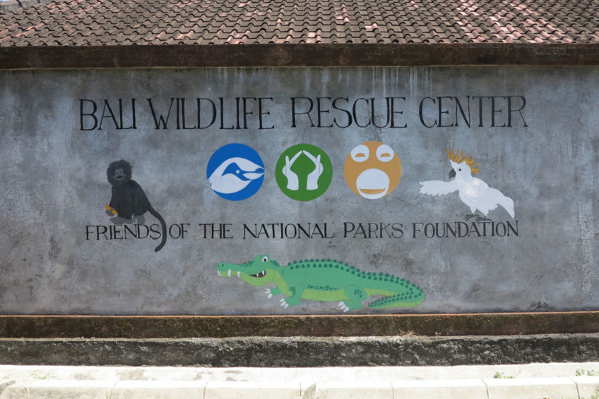 friends-of-the-national-parks-foundation-andrea-6