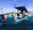 kura-kura-surfcamp-kuta-lombok-2