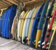 kura-kura-surfcamp-kuta-lombok-blue-board