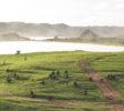 kura-kura-surfcamp-kuta-lombok-bukit-meresek