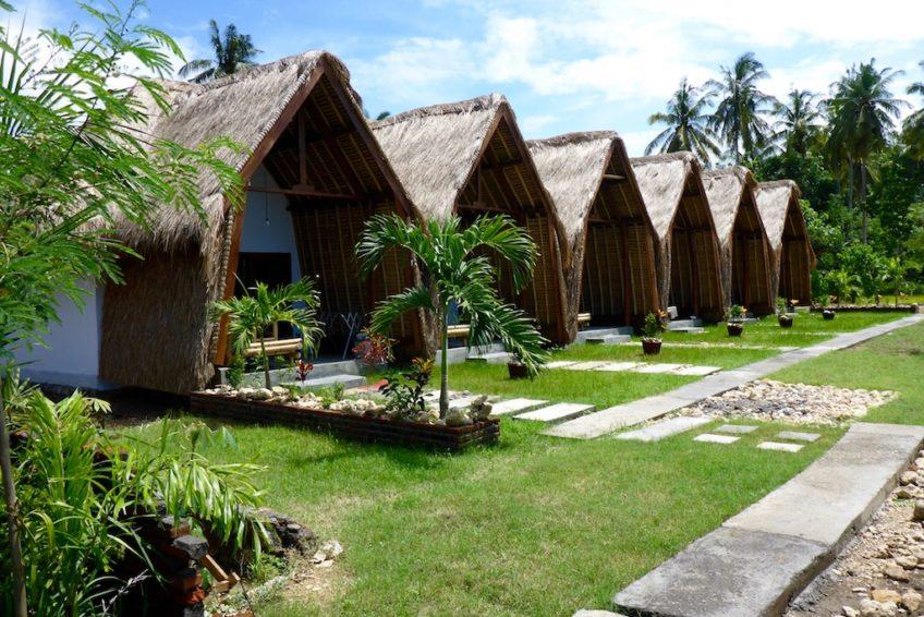 kura-kura-surfcamp-kuta-lombok-homestay