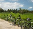 Greenbike-Cycling-Tour61