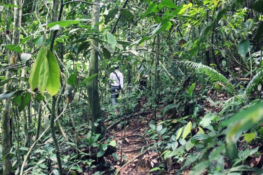 Indonesien-Rundreise-Erlebe-Fernreisen-4