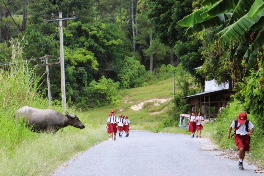 Indonesien-Rundreise-Erlebe-Fernreisen-7
