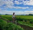 canggu-biking-bali-outdoor-biking-view