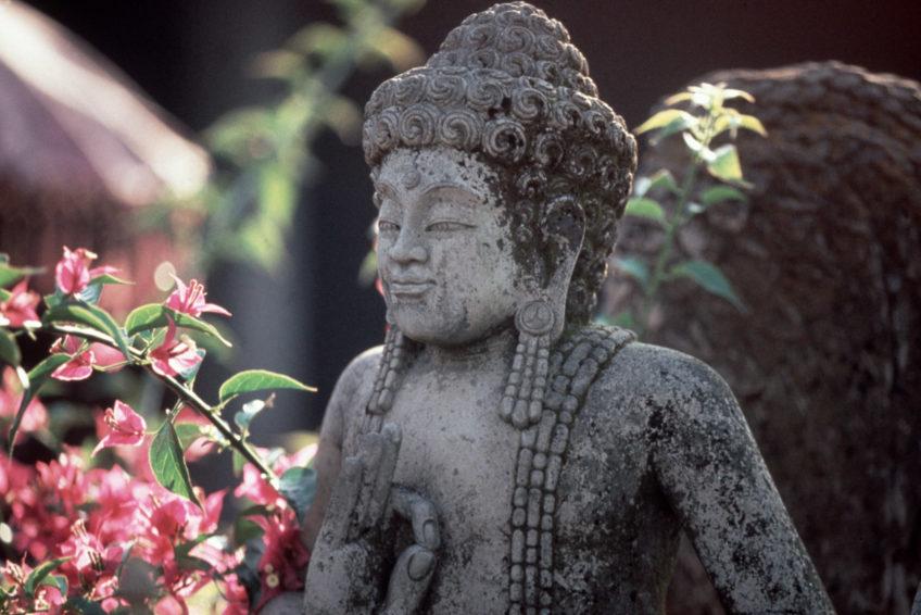 reisefieber-bali-yoga-wellness-reise-4