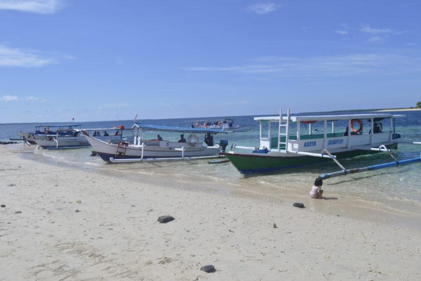 schnorcheln-ost-lombok-10