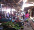 schnorcheln-ost-lombok-13