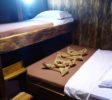 Wunderpus Liveaboard Komodo Cabin 2