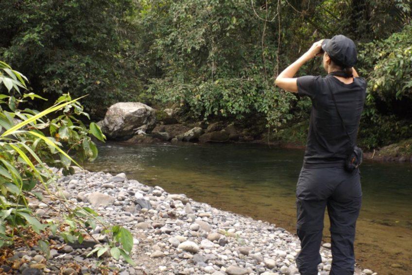 bogani-nani-wartabone-nationalpark-BNW-Birdwatching