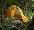 bogani-nani-wartabone-nationalpark-BNW-Urwaldcamping