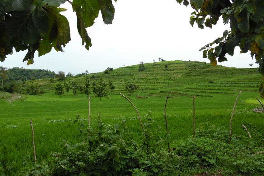 sued-lombok-1