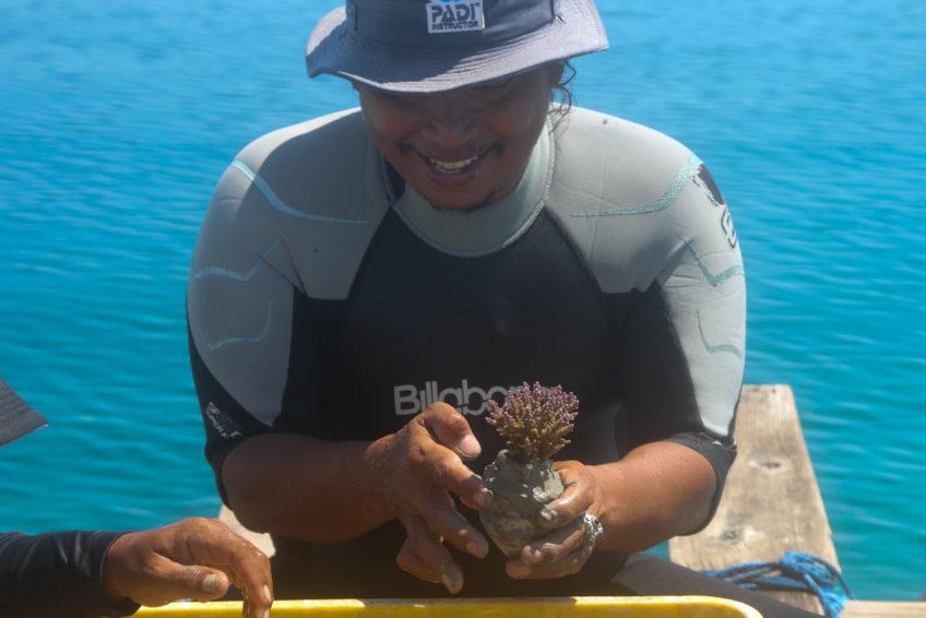 sumberkima-reef-project-2