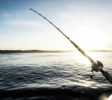 Sri Noa Noa Surf and Fishing