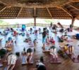Yin Vinyasa free Class Sundays at Udara