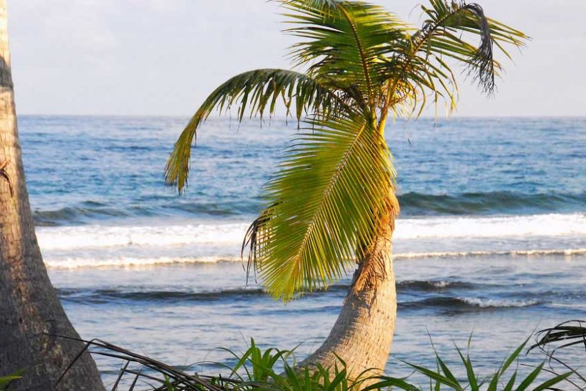 bogani-homestay-beach-celebes2