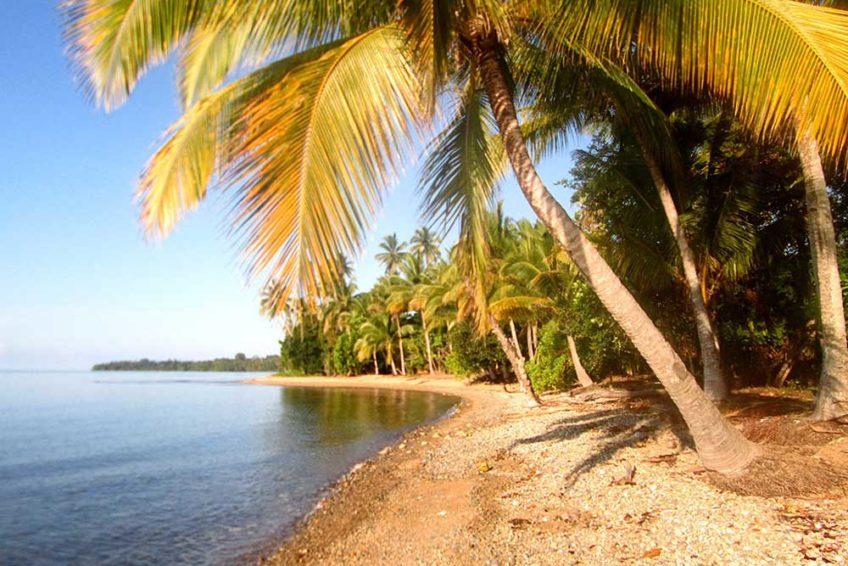 bogani-homestay-beach1