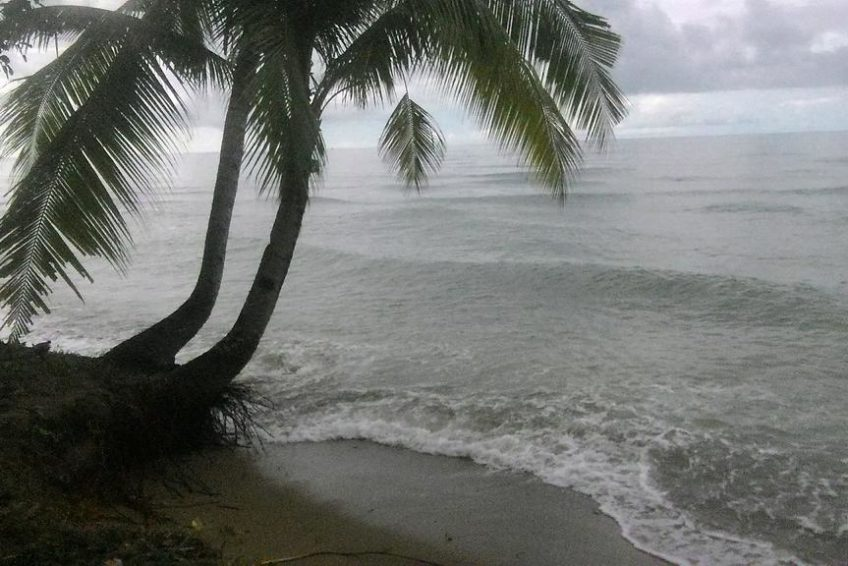 bogani-homestay-beach