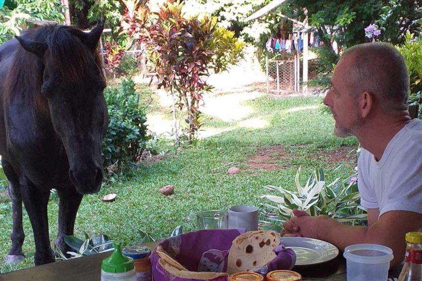 bogani-homestay-breakfast