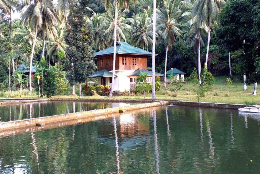 bogani-homestay-guest-banner