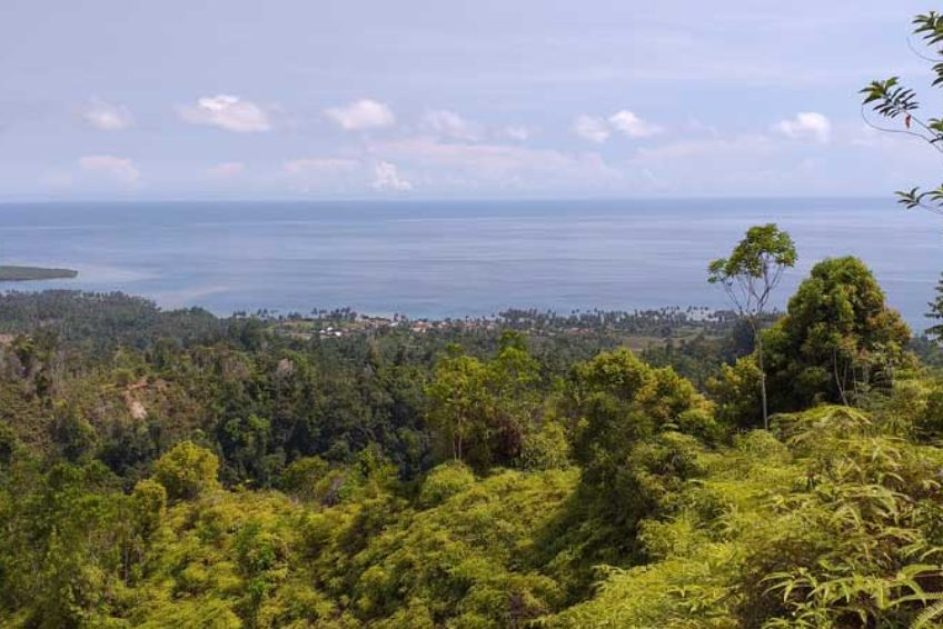 bogani-homestay-panorama3