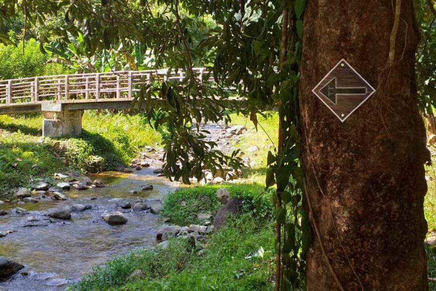bogani-homestay-river-banner2