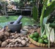 Jamu-Workshop-Ubud-11