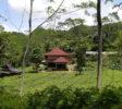 Nglinggo-yogyakarta