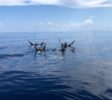 Araya Dive Resort-1