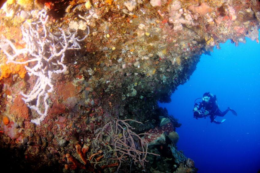 Araya Dive Resort-15