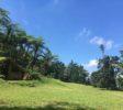 TANAKITA Camping 20