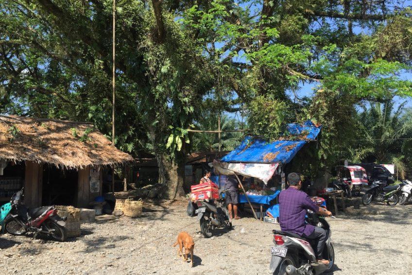 Local_Life_Sumatra