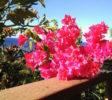 Balila Beach Resort Außenbereich