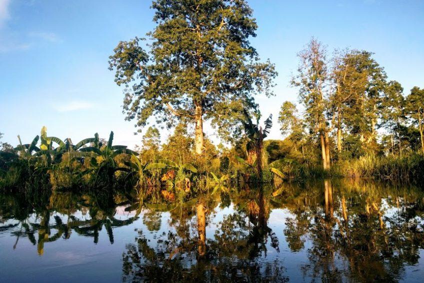 Kalimantan-tour-4