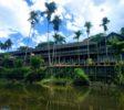 Kalimantan-tour-9