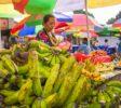 Das Marktleben ist bunt und untouristisch