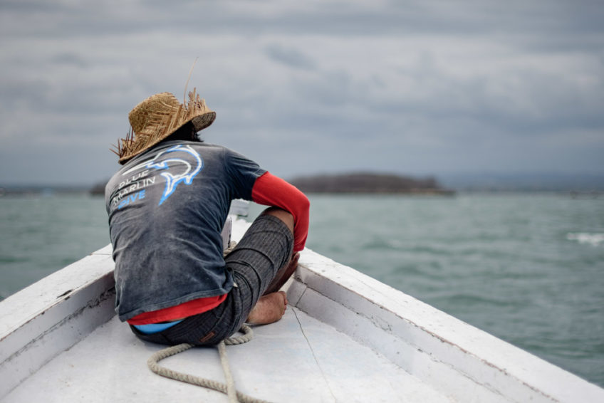 lombok-blue-marlin-12